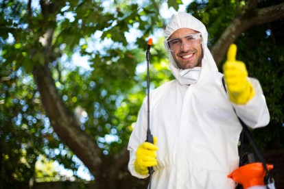 Pest Control in Addlestone, New Haw, Woodham, KT15. Call Now 020 8166 9746
