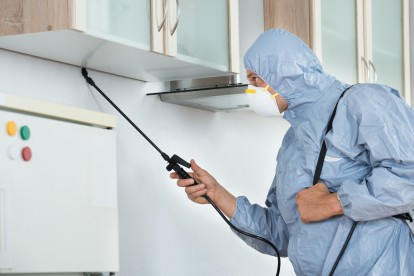 Home Pest Control, Pest Control in Addlestone, New Haw, Woodham, KT15. Call Now 020 8166 9746
