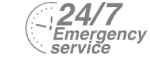 24/7 Emergency Service Pest Control in Addlestone, New Haw, Woodham, KT15. Call Now! 020 8166 9746